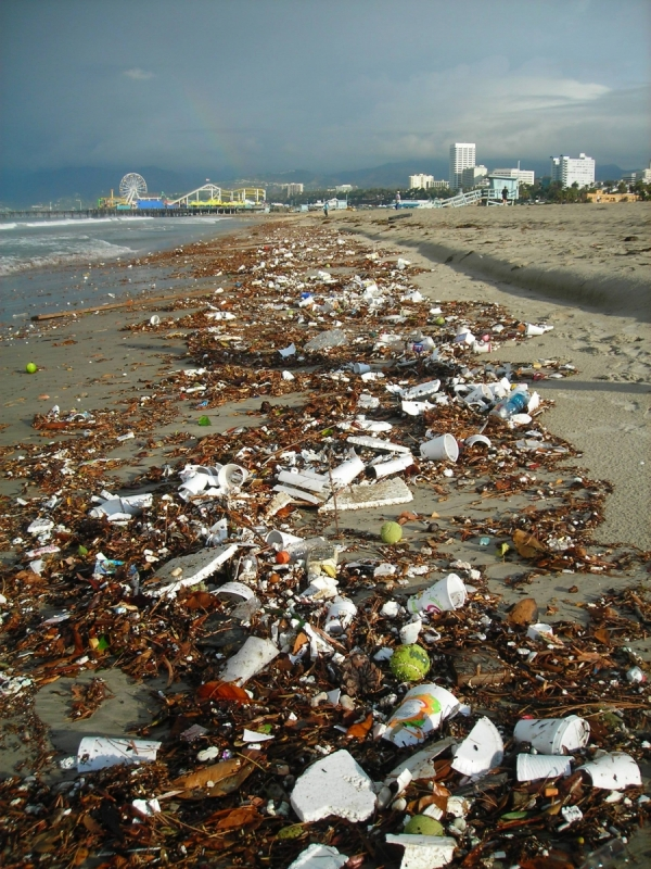 Santa Monica Beach littered with trash after the first storm of the year
