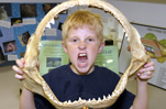 Science Adventures Camp at Santa Monica Pier Aquarium shark jaw
