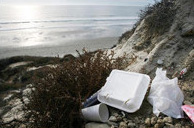 Hermosa Beach polystyrene ban