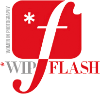 WIP Flash Logo Third Party Event