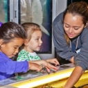 Santa Monica Pier Aquarium Micro Bio Classes Pre-schoolers