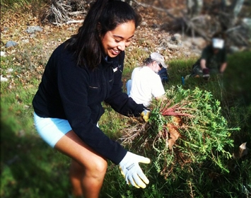 Stream Team Restoration Girl Weed Pulling Heal the Bay Malibu Creek State Park