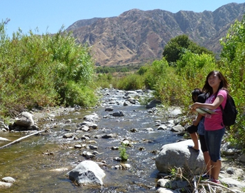 Creek Education: High school students take samples at local creek