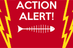 Action Alert: Need Activists at Los Angeles Board of Supervisors Meeting