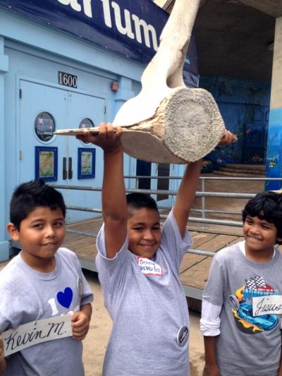 child holds up a whale vertebrate at the Santa Monica Pier Aquarium