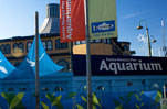 Santa Monica Pier Aquarium Holiday Closures