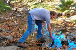 Watering & Weed Pulling - Stream Restoration at Malibu Creek State Park