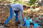 Stream Team Cleanup Malibu Water Protection Environment