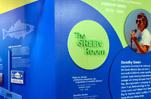 Santa Monica Pier Aquarium Dorothy Green Room