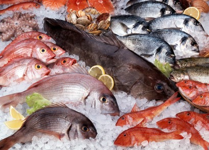 Fish Market - Local Sustainable Seafood Solutions: A Panel Discussion