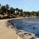 Oil spill at Refugio State Beach in Santa Barbara