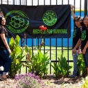 Compton, Ian Somerhalder, Big Sunday, cleanup, Earth Day