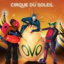 Cirque du Soleil, OVO, Free Sundays, Santa Monica Pier Aquarium