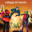 Heal the Bay, Cirque du Soleil, OVO, Santa Monica Pier