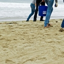 Will Rogers State Beach cleanup beach kids trash November 17 Saturday