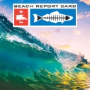 beach report card annual report 2015 ocean wave surf, water quality grades