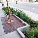 Clean Water Clean Beach Green Street Hope St. Downtown Los Angeles TheGoodStreet