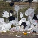 plastic bags ban california pollution garbage dump waste