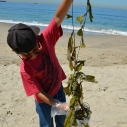 Kids Ocean Day on May 14, 2015