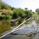 Los Angeles River Hidden LA Speakers Bureau solutions pollution storm drain