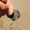 tar ball natural oil seeps Santa Monica Bay Dockweiler Beach