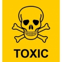 toxic skull wastewater stormwater toxicity pollution water creek ocean