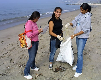Volunteers during a cleanup at Will Rogers State Beach, Pacific Palisades
