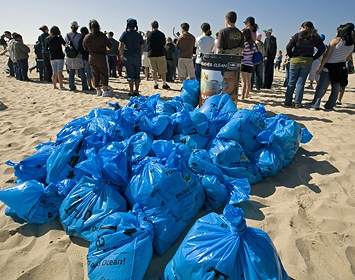 Help clean your local beach!