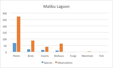 Malibu Lagoon species diversity bar graph
