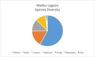 Malibu Lagoon species diversity pie chart