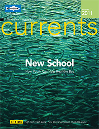 Currents Newsletter - Summer 2011