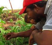 Short Film: Semilla Nueva - Guatemala